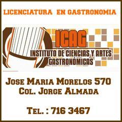 banner icag 2014