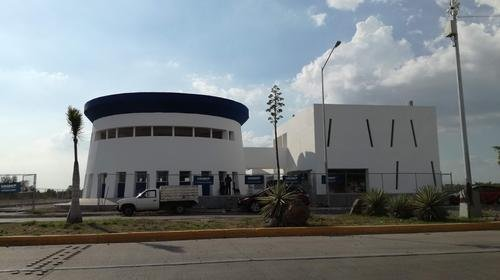 universidad culiacan