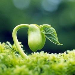 amorcer efficacement sa croissance personnelle