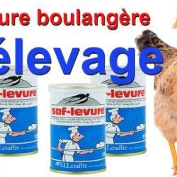 Levure-et-Elevage