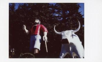 Redwoods6