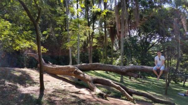 Jardim Botânico São paulo 3