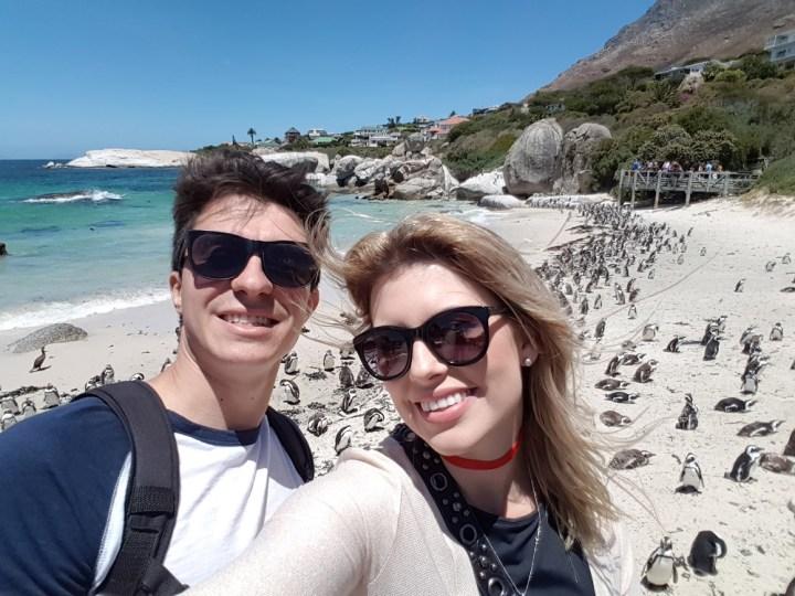 O que fazer na Cidade do Cabo na África do Sul Boulder's Beach praia dos pinguins (1)