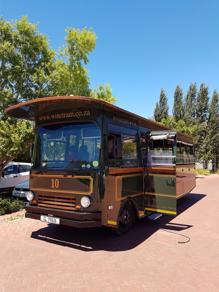 Vinícolas na África do Sul Stellenbosch e Franschhoek Wine tram