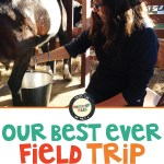 Best ever field trip and why