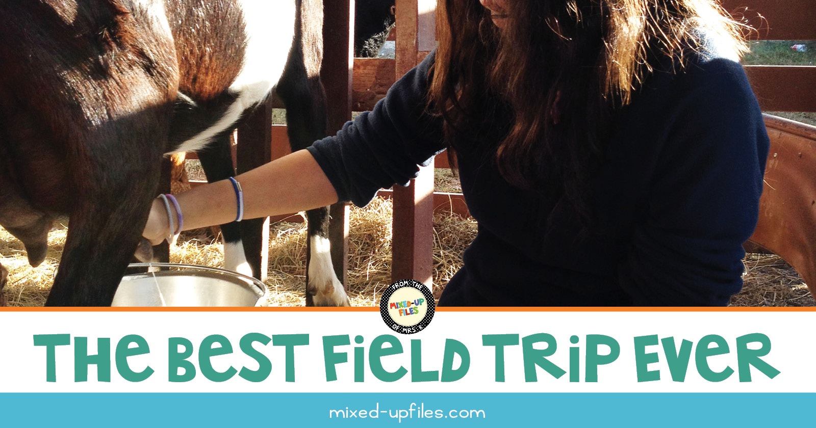 Our best field trip ever - blog post by mixed-upfiles.com
