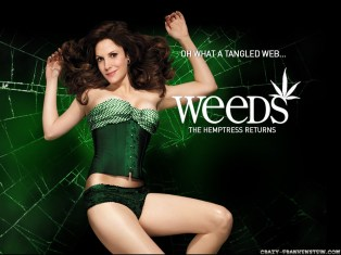 weeds-tv-serie-wallpapers-3-1024x768