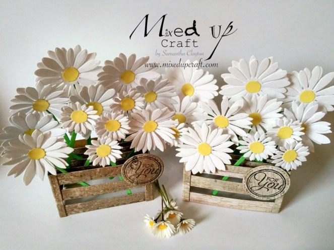 Daisy Pop Up Box Card