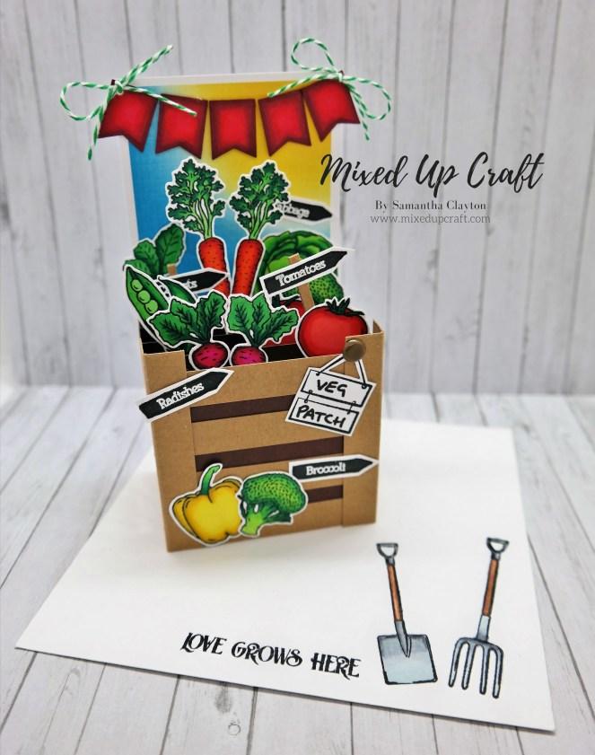Pop-Up Veg Patch Box Card