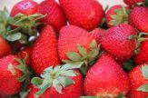 Saturated Strawberries