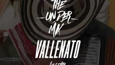 Photo of Vallenato The Under Mix – Dj Calin