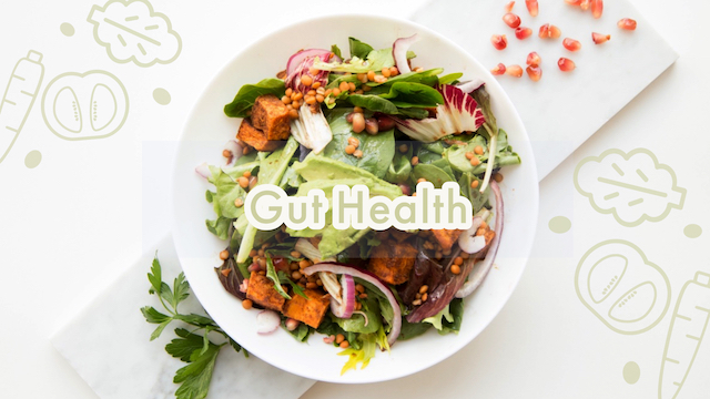 Gut Health | Life Hacks