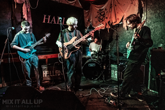 Web supporting Hallan at Hallanween at the Edge of the Wedge, Portsmouth - 29/10/19
