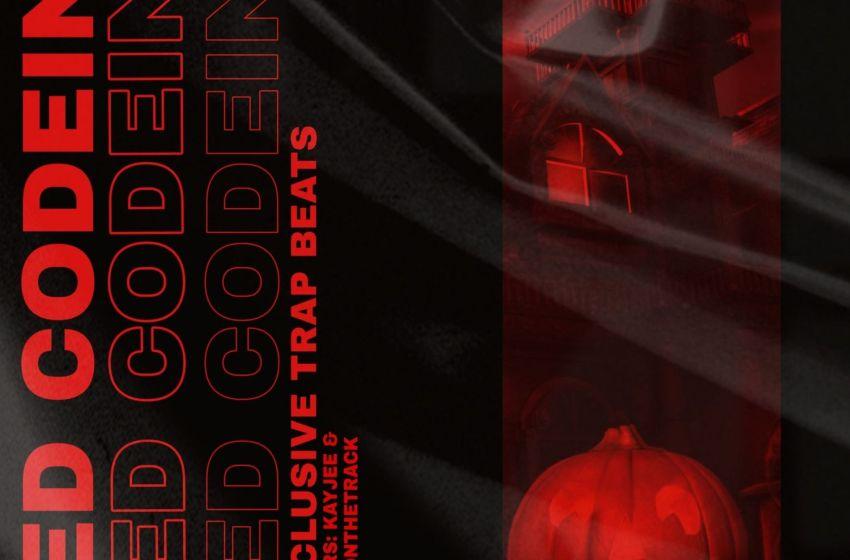 HemmzyOnTheTrack & Kayjee – Red Codeine Beatape (Instrumental Mixtape)