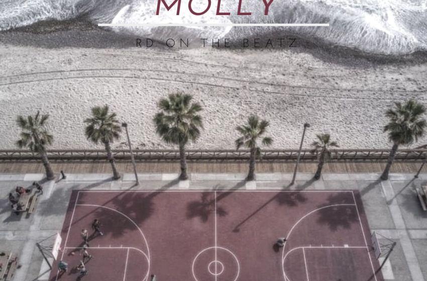 RD On the Beatz – Molly (Instrumental Mixtape)