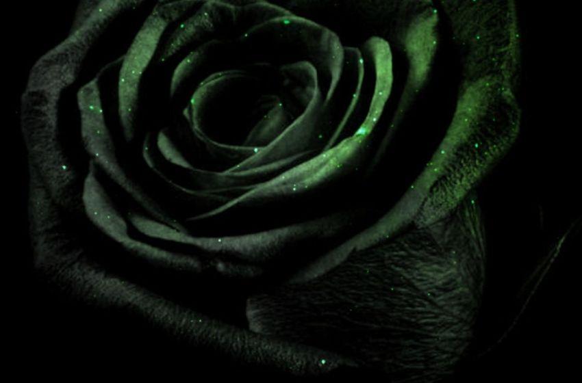 Whiteboi Beats – Feelings: R&B Instrumentals Vol. 2 (Instrumental Mixtape)