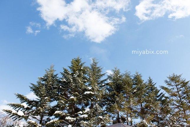 雪山の青空