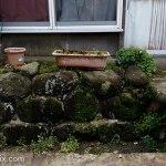 植木鉢,石垣