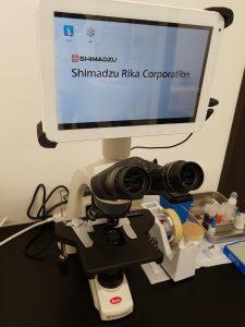 顕微鏡 細胞診 病理