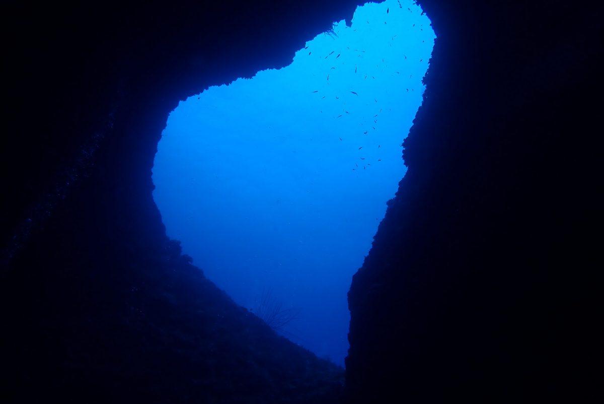 ファンダイビングに体験ダイビングで下地へ