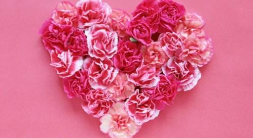 母の日に贈りたい花言葉の花10個!感謝を伝えるプレゼントにおすすめのお花は?