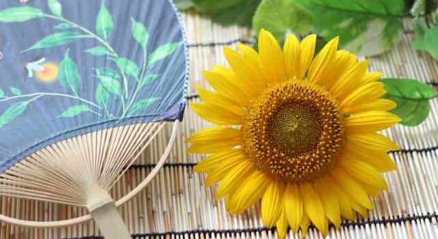 浴衣の髪型,アレンジ別での簡単なやり方まとめ(夏祭り)!編み込みや三つ編みなど