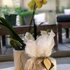 מארז מתנה גדול לבישום הבית Italian Flowers
