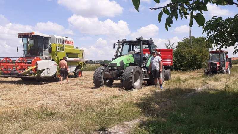 Uspješna žetva na vakufskim parcelama u Bijeljini i Janji (FOTO)