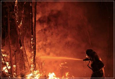 オーストラリア,山火事,森林火災,原因,理由,警察,気候変動,放火,放火魔,放火犯,自然火災,自然発火,