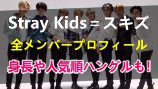 スキズことStrayKidsの全メンバープロフィール!メンバーカラーや身長、人気順、呼び方やハングルの読み方書き方までまとめ!