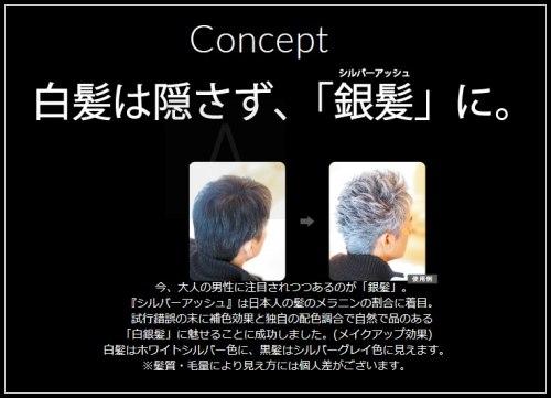 シルバーアッシュの白髪シルバーヘアの使い方画像
