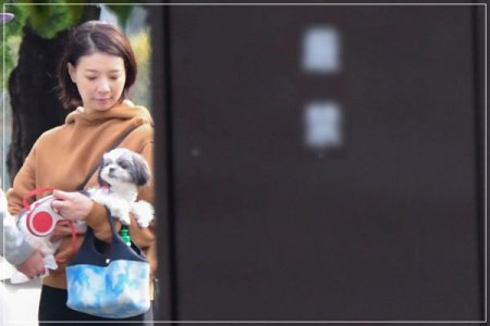 V6坂本昌行と結婚相手・朝海ひかるが一緒に犬の散歩をしているフライデー画像