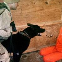 Film więzieniach CIA NA YT jest tylko zajawka tego video, w tym art. MOCNY MATERIAŁ FOTO I VIDEO UWAGA:+18 ☀Autor Gabi☀