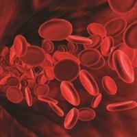 CZYNNIK Rh minus – Czy jest to boski ślad Stwórcy w naszej krwi. Teoria spiskowa czy też nie akceptowana przez naukę prawda?