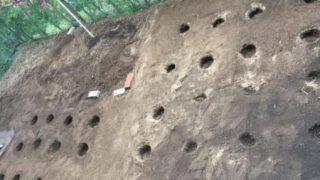 クラピアの植え穴