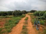 cycling-whitefield-bangalore-04