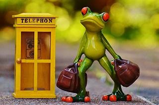 frog-947742_640.jpg