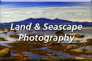 MJB Landscape Icon2