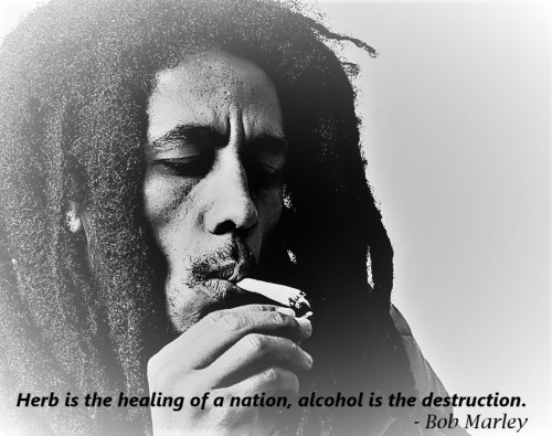 Cannabis Quotes - Herb is the healing of a nation, alcohol is the destruction - Bob Marley