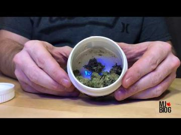Unboxing of Helios cannabis strain by Hexo