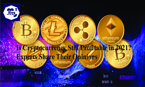 Is Cryptocurrency Still Profitable in 2021? Experts Share Their Opinions