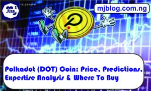 Polkadot (DOT) Coin
