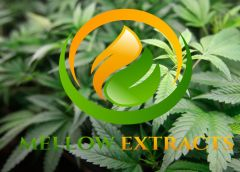 Captor Capital Extracts More Growth