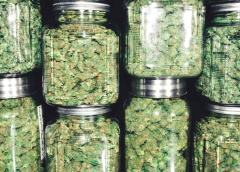 Are Pot Stocks in Danger of Running out of Money?