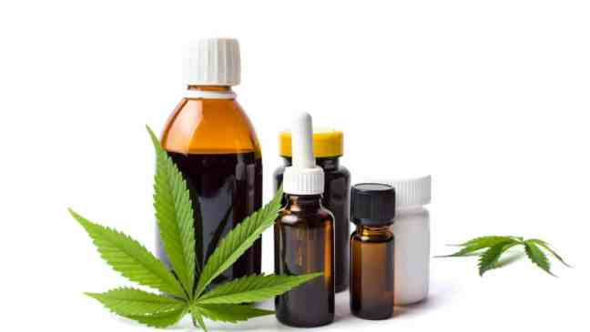 Should You Buy Shares of This Top CBD Company After Earnings?