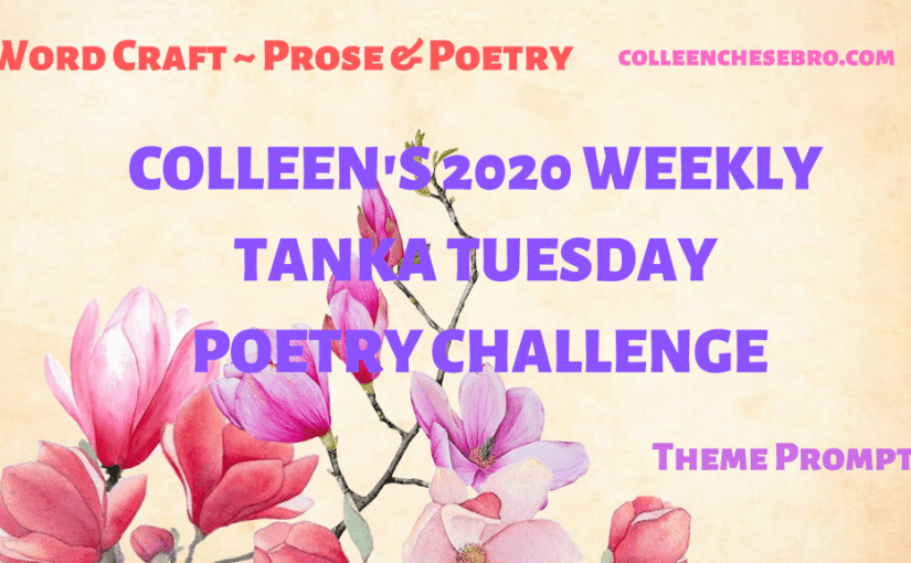 Colleen's 2020 Weekly #Tanka Tuesday #Poetry Challenge No. 166, #ThemePrompt – Finding Clarity