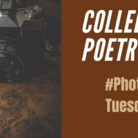 Colleen's #Tanka Tuesday #Poetry Challenge no. 191 #Photoprompt