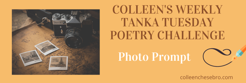 COLLEEN'S 2020 WEEKLY #TANKA TUESDAY #POETRY CHALLENGE NO. 195 #EKPHRASTIC #PHOTOPROMPT