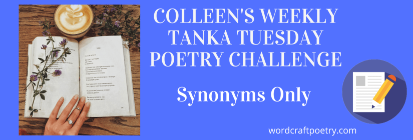 #TANKA TUESDAY POETRY CHALLENGE NO. 202 SYNONYMSONLY