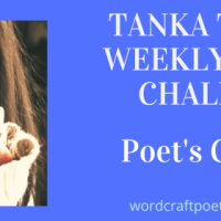 #TANKA TUESDAY #POETRY CHALLENGE NO. 209, #POET'SCHOICE - #Tanka
